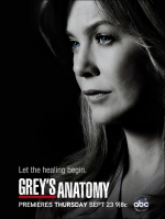 Анатомия страсти (1 сезон ) /  Grey's Anatomy 1